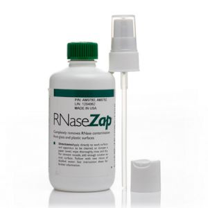 Invitrogen AM9780,RNaseZap® RNase Decontamination Solution,规格:250ml,室温保存